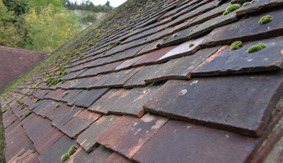 fairfax roof replacement advice